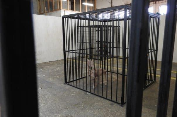 EVENTY A TEAMBUILDING - escape room Bratislava - Divná Basa | zazito.ooo